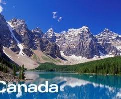海外でも人気? カナダやフィリピンでもよもぎ蒸しができます!