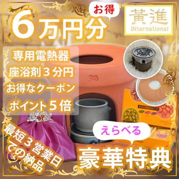 ファンジン黄土よもぎ蒸しセット(自宅用業務用)
