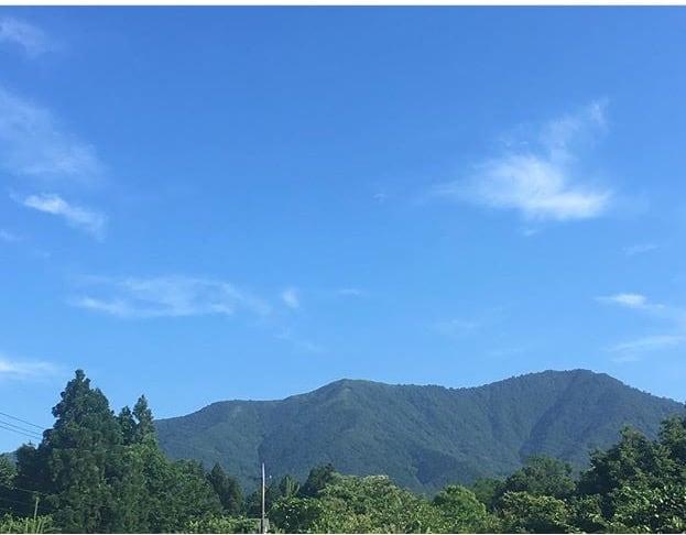 自然がいっぱい!岡山県真庭市のよもぎ蒸しサロン「Serafine444(セラフィーナ)」